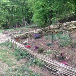 Le jardin biodiversité