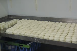 Fromages blancs