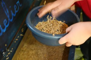 Nourrir avec les céréales de la ferme